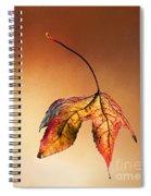 Autumn Leaf Fallen Spiral Notebook