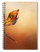 Autumn Leaf Falling By Kaye Menner Spiral Notebook