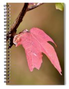Autumn Leaf Spiral Notebook