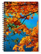 Autumn Leaves 7 Spiral Notebook