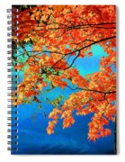 Autumn Leaves 8 Spiral Notebook