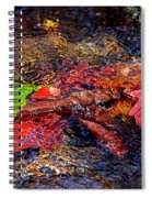 Autumn Leaves Abstract Spiral Notebook