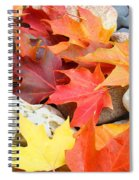 Autumn Leaves Art Print Coastal Fossil Rocks Baslee Troutman Spiral Notebook