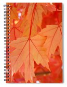 Autumn Leaves Art Prints Orange Fall Leaves Baslee Troutman Spiral Notebook
