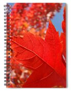 Autumn Leaves Fall Art Red Orange Leaves Blue Sky Baslee Troutman Spiral Notebook