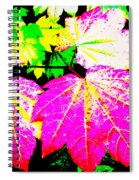 Autumn Leaves Holiday Style Spiral Notebook