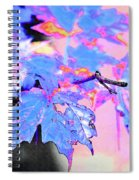 Autumn Leaves In Blue Spiral Notebook