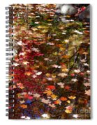 Autumn Leaves Reflections Spiral Notebook
