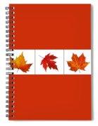 Autumn Leaves Triptych Spiral Notebook