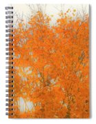 Autumn Leaves2 Spiral Notebook