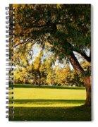 Autumn Light Spiral Notebook