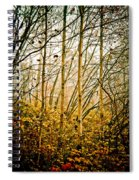autumn Lines Spiral Notebook