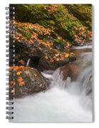 Autumn Litter Spiral Notebook