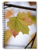 Autumn Maple Leaf Vertical Spiral Notebook