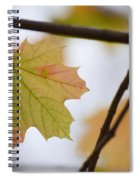 Autumn Maple Leaves Horizontal Spiral Notebook