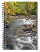 Autumn Meander Spiral Notebook