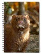 Autumn Mink Spiral Notebook