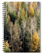 Autumn Mix Spiral Notebook