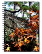 Autumn Moss Spiral Notebook