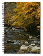 Autumn Mountain Stream Spiral Notebook