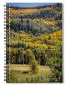 Autumn On A Colorado Range Spiral Notebook