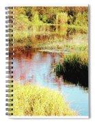 Autumn On A Pennsylvania Mountain Stream Spiral Notebook