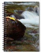 Autumn On Jackson Creek Spiral Notebook