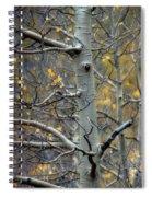 Autumn On My Mind Spiral Notebook