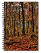 Autumn On The Ice Age Trail Spiral Notebook