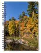Autumn On The Riverbank - The Changing Forest Spiral Notebook
