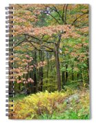Autumn Paints A Dogwood And Ferns Spiral Notebook