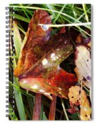 Autumn Palette Spiral Notebook