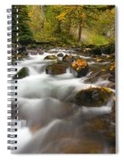 Autumn Passages Spiral Notebook