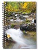 Autumn Passing Spiral Notebook