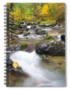 Autumn Passing Spiral Notebook