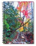 Autumn Pathway Spiral Notebook