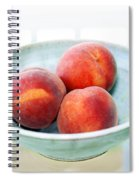 Autumn Peaches Spiral Notebook
