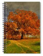 Autumn Picnic On The Hill Spiral Notebook