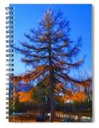 Autumn Pine Tree Spiral Notebook