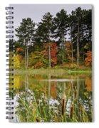 Autumn Pond Spiral Notebook