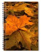 Autumn Quilt Spiral Notebook