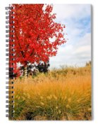 Autumn Red Maple Spiral Notebook