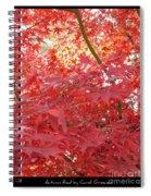 Autumn Red Poster Spiral Notebook