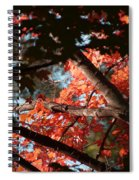 Autumn Red Trees 2015 02 Spiral Notebook