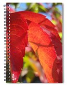 Autumn Reds Spiral Notebook