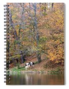 Autumn Reflections Cow Farm Spiral Notebook
