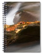 Autumn Resting Place Spiral Notebook