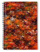 Autumn Riot Spiral Notebook