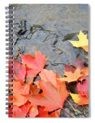 Autumn River Landscape Red Fall Leaves Spiral Notebook