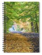 Autumn Road 2 Spiral Notebook